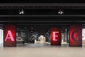 Fair appearance for AEG/ Electrolux by D'art Design Gruppe at IFA 2017 in Berlin.