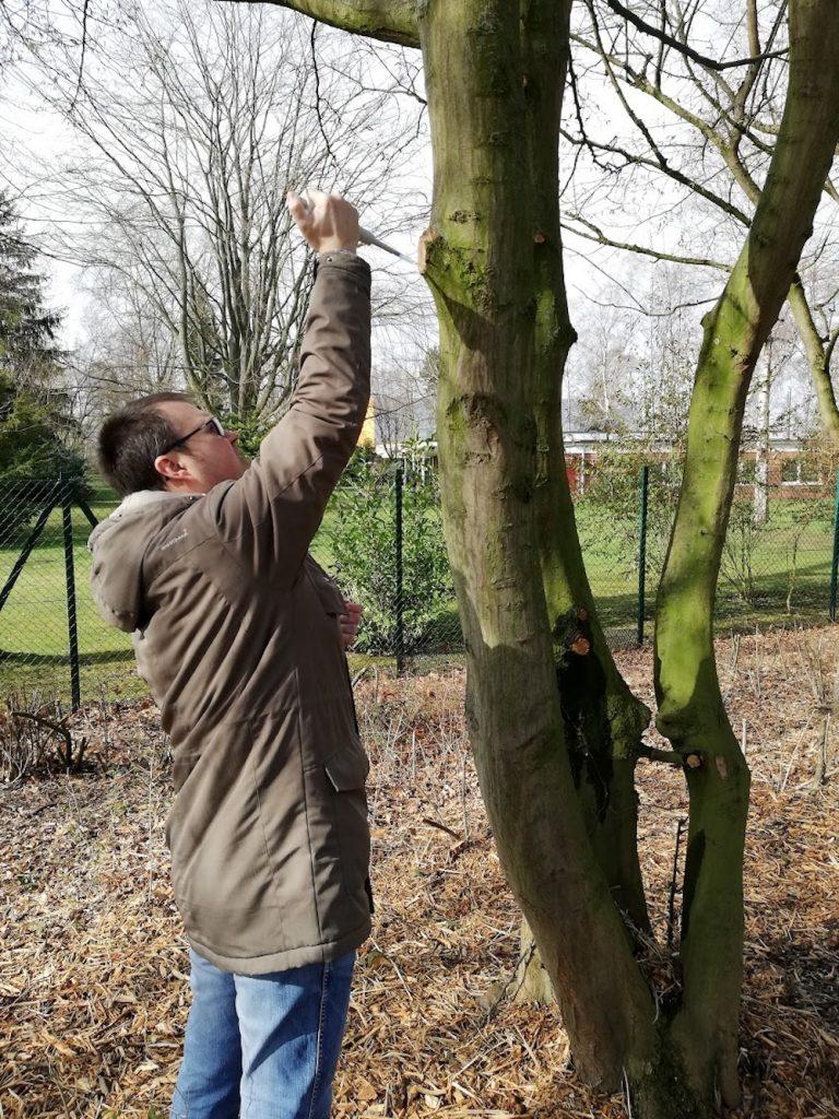 Neue Hefe-Spezies in Braunschweig entdeckt